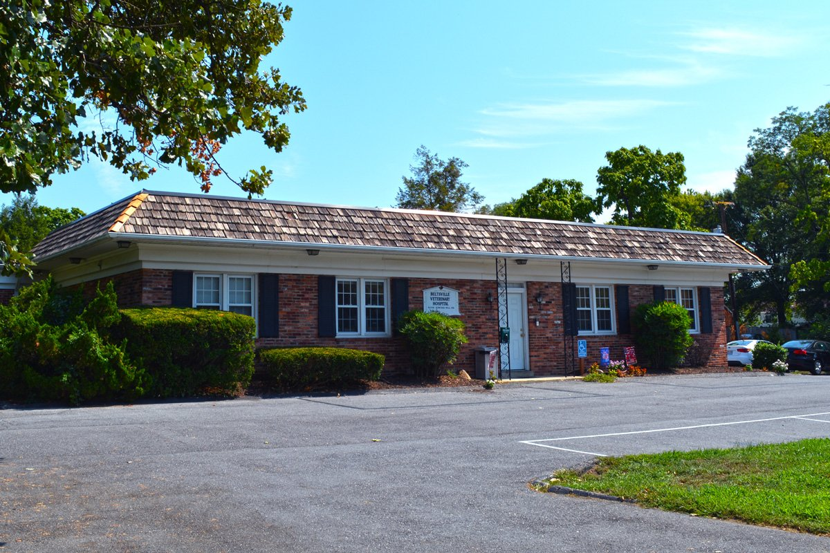 Beltsville Veterinary Animal Hospital